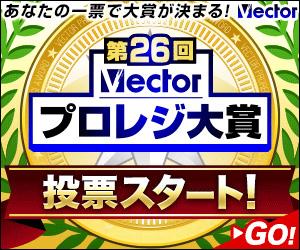 Vp300x250